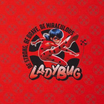 Miraculous Ladybug Panel